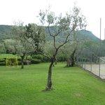 Relax al Garda (Poiano Hotel R.)