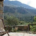 Cabin 1 patio view