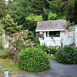 Lovely rose garden and the arch entrance