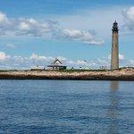 Petit Manan Lighthouse, Atlantic Puffins galore