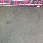dirty stained carpet