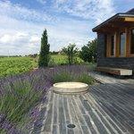Secret Spot Wines, Duoro Valley