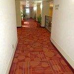 Guest room corridors