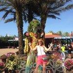Chegando a Busch Gardens