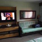 hd tv and sleeper sofa