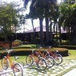 complementary bicycles at paradisus punta cana