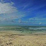 Amazing Zanzibar!