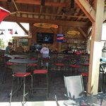 Shandy Lion Bar