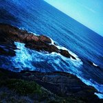 Foto de Treachery Camp Seal Rocks