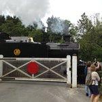 Steam train to Totnes