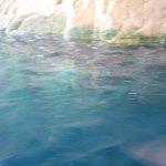 海の青さが素晴らしかったです