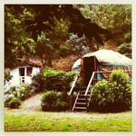 Chestnut Tree Yurt & Washroom