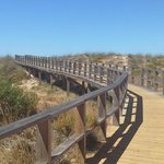 One of the boardwalks you can take