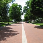Main Street Bricks