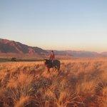 Horse Riding Sundowner
