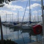 Port d'Alcudia marina