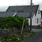 Cottages along the road to Doolin town.