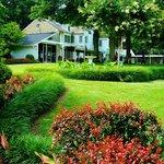 Backyard of Graceland