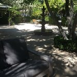 Tranquil Courtyard - good place to unwind and reflect