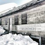 Passeggiate invernali nei boschi incantati del Vigilserjoch