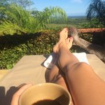 Costa Rican coffee overlooking forest and ocean