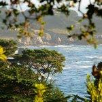 Our fantastic ocean view suite