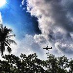 Occasional plane overhead