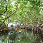Partake in our kayak and snorkel tour through the mangroves