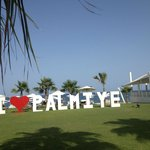 Tout le monde LOVE Palmiye 2014!