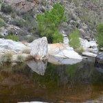 Sabinoy Canyon
