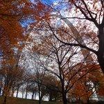Fall in St. Louis