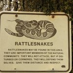 Rattlesnakes - you have been warned!
