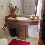 Iguana Bathroom