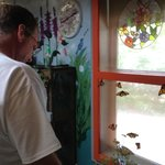 Jim looking at the monarchs