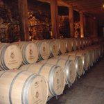 Barrel room of one of the Provence Chateaus