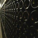 Wine storage cellars