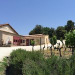 One of the tasting rooms in Provence