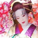 Geisha Art Display