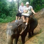Катались на слонике