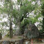 山門までの境内の彫像