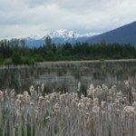 Valemount lake 2