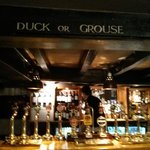 Duck or grouse