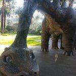 Echo the dinosaur!