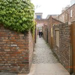 THE GINNEL
