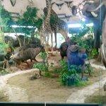 Hotel Simba,museo