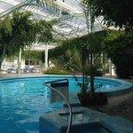 piscina tropicale