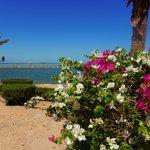 På poolområdet utsikt mot havet