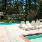 Seventh Mountain Resort Pool Area