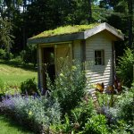 Shed with roof garden