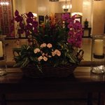 Centerpiece by elevators